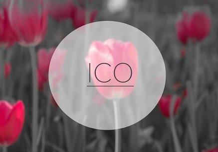 Собственник Chronopay рассказал о рисках ICO в РФ