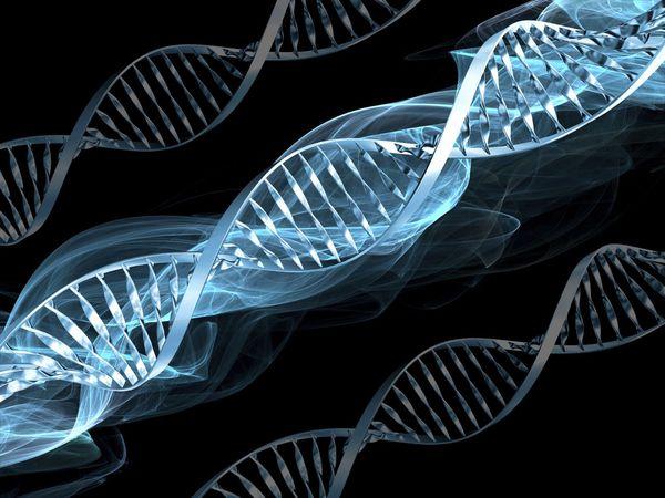 """В США технологии генной инженерии для лечения рака дали """"зелёный свет"""""""