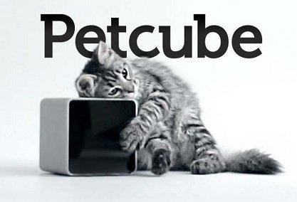 Украинская стартап-компания Petcube привлекла 10 млн USD