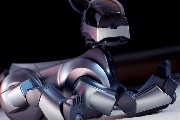 Компания Sony возрождает собаку-робота