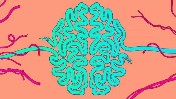 Учёные создали нейросеть с экстрасенсорными способностями