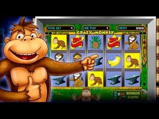 казино crazy monkey