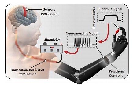 Инженеры из США создали электрическую кожу, позволяющую ощущать прикосновения через протез