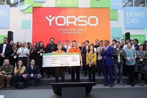 Инвесторы предоставили B2B-маркетплейсу Yorso более 7 млн рублей